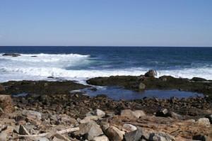 atlantic-ocean-off-bass