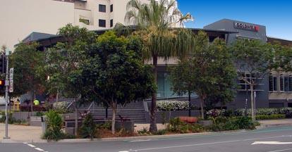 MelbourneTrees.jpg