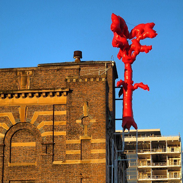 Caroline Rothwell, Symbiosis, 2013, Inflatable