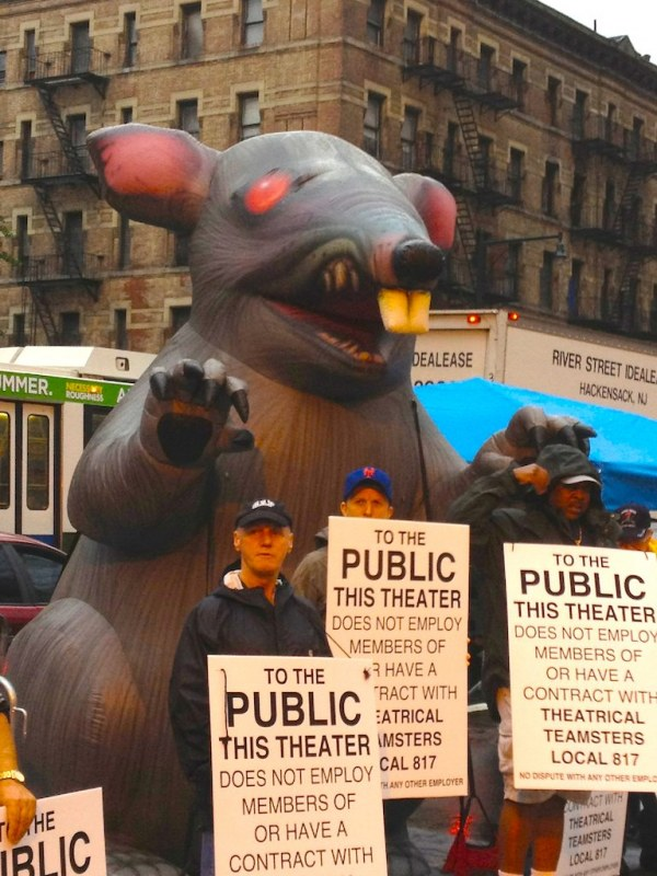 Real Scab Rat in NYC