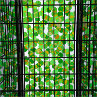New and Old Glass Ceilings