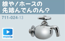 Watch the video for these Japanese faucets. Why not have fun. http://kakudai.jp/dareya/index.html