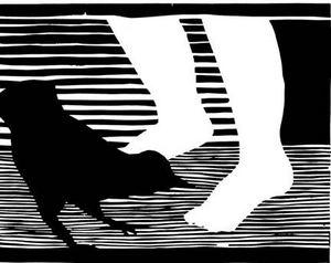 spaffordbird7.jpg