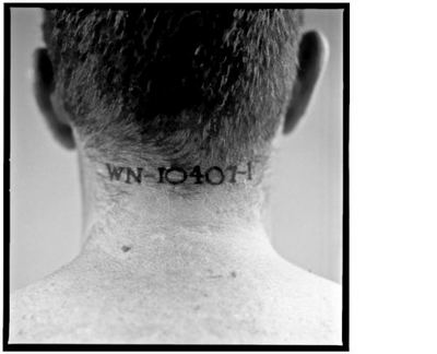 american history x tattoos. license number tattooed on