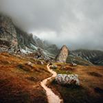 Photo by Daniel J. Schwarz on Unsplash