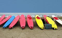 Surf Bo.jpg