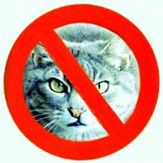 Ban All Cats Logo