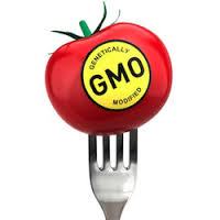 In Favor of Genetically Modified Organizations
