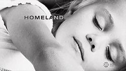 250px-HomelandTVSeries