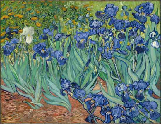 "van Gogh, ""Irises,"" 1889 Getty Museum"