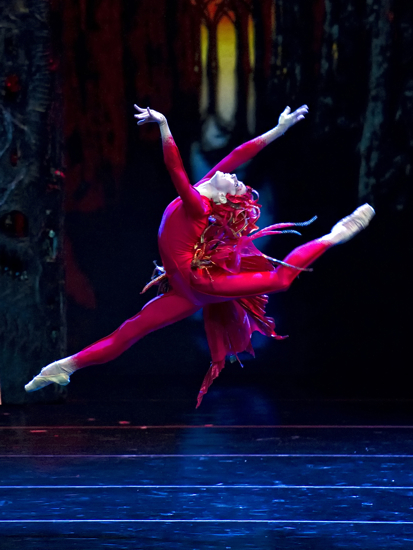 Natalia Osipova in Alexei Ratmansky's new Firebird for ABT. Photo: Gene Schiavone