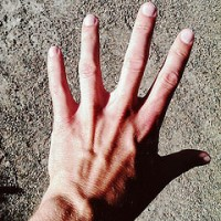 The Visible Hand