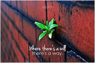 WhereTheresA_Will