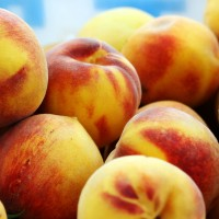 Cooking, peaches and tasting the arts