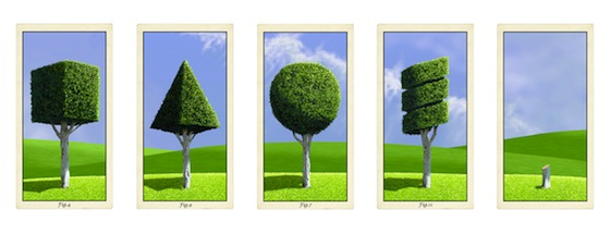 Curriculum Vitae © 2013 by Malcolm Mc Neill