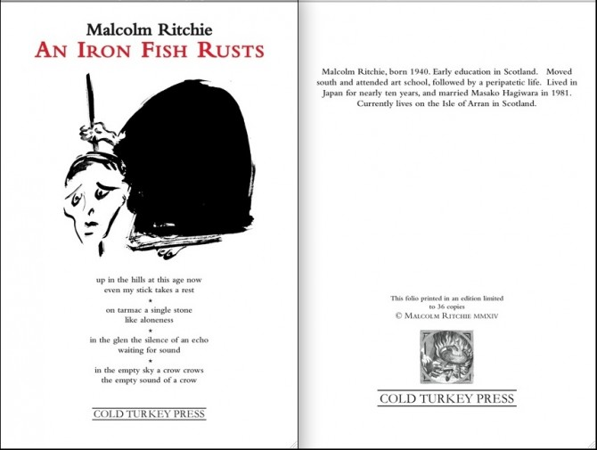 'An Iron Fish Rusts' by Malcolm Ritchie [Cold Turkey Press, 2014]