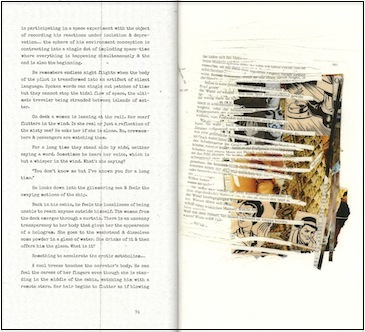 'Flesh Film' pages 74 and 75