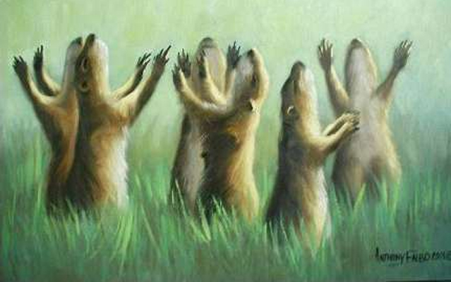 Prarie Dog Rapture