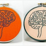 Male And Female Brains Really Are Built Differently