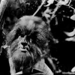 But How Do Psychiatrists Treat Werewolves?