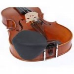 Rare Strad Viola Fails To Find A Buyer At Auction