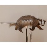 'Dead Mammals Have Never Been So Mesmerizing': A Badger Made Into A Theremin