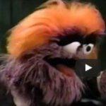 On Sesame Street, Trump Was A Grump
