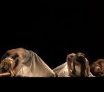 Gender Parity In Ballet? We're A LONG Way Off