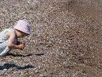 So Curiosity Is A Genetic Trait?