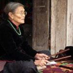 What Factors Keep Some World Musical Traditions Healthy As Others Wither Away?