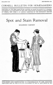 Spot and Stain