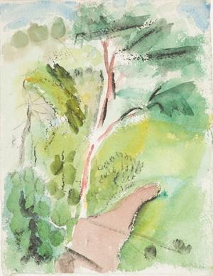 Tree, Stonington, Deer Isle