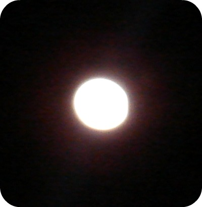 Winter Moon 2011