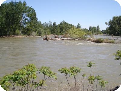 Yakima High Water