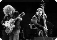 Metheny, Grenadier