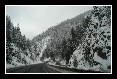 Cascade Winter