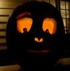 pumpkin 2013