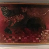 Cats Barbara Jones