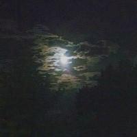 Impressionist Moon 61414