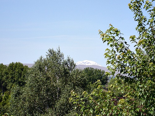 Mt. Adams 61114