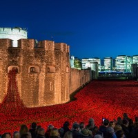 tower-london-poppies copy